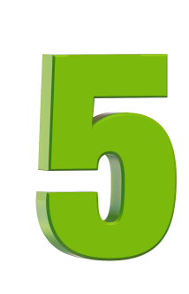 5_green_dml